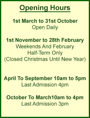 Liberty's Owl Raptor Reptile Centre Admission Times